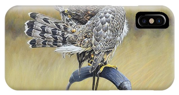 IPhone Case featuring the painting Goshawk Preening by Alan M Hunt