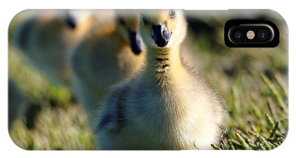 Gosling March IPhone Case