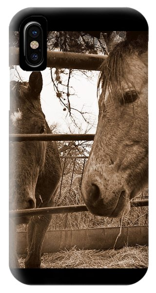 Gossip At The Fence IPhone Case