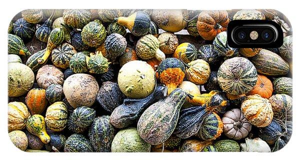 Gourds Pumpkins - Wisconsin  IPhone Case