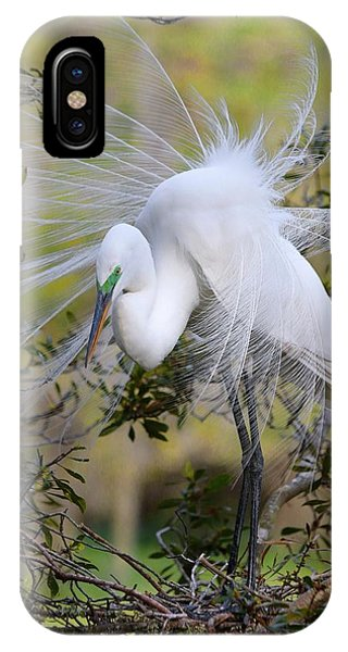 Grace In Nature IPhone Case