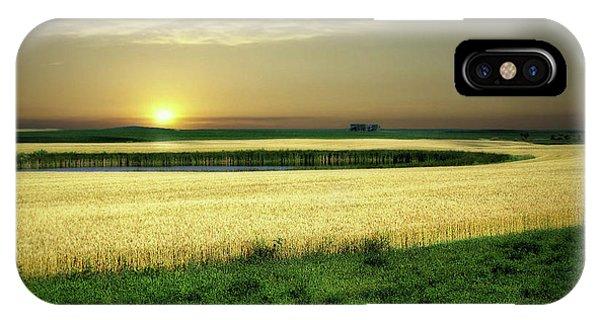 Grain Field IPhone Case