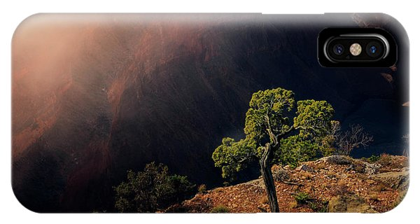 Grand Canyon Juniper IPhone Case