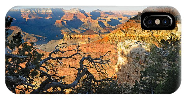 Grand Canyon South Rim - Sunset Through Trees IPhone Case