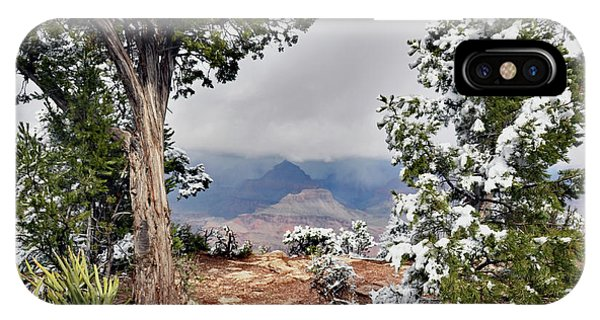 Grand Canyon Through The Trees IPhone Case