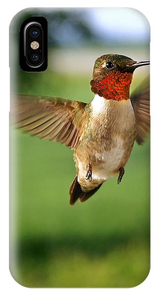 Grand Display IPhone Case