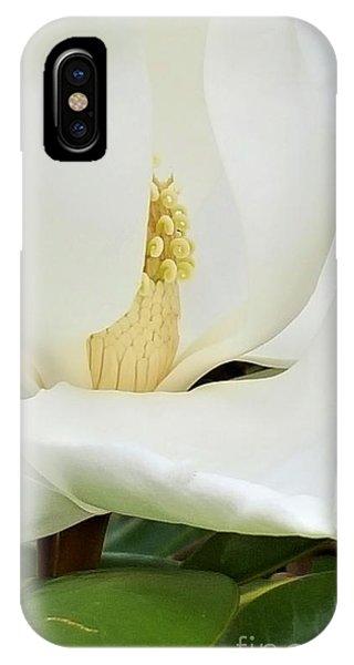 Grand Magnolia IPhone Case