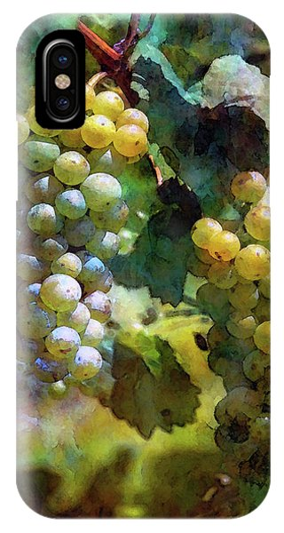 Grape Prism 2739 Idp_2 IPhone Case
