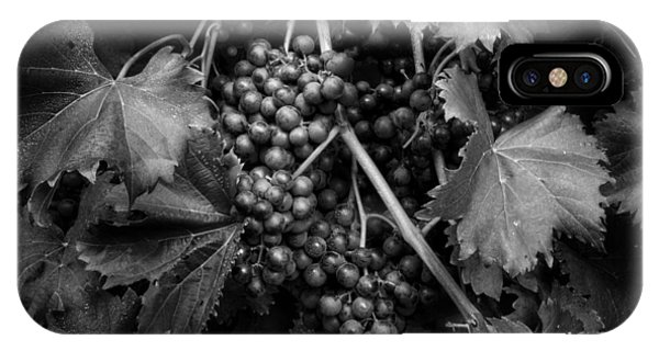 Grapes In Black And White IPhone Case