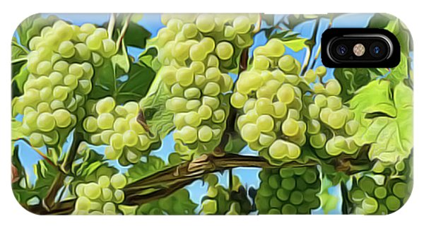iPhone Case - Grapes Not Wrath by Harry Warrick