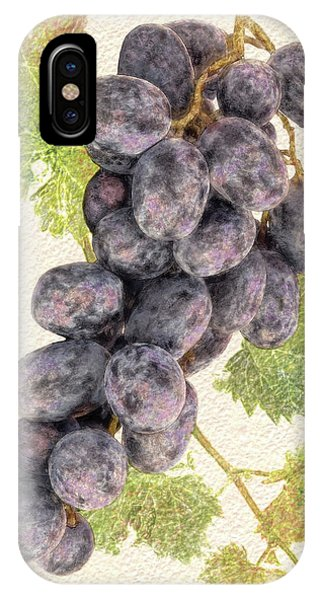Luscious Grapes IPhone Case