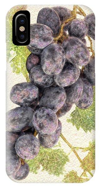 Luscious Grapes IPhone Case