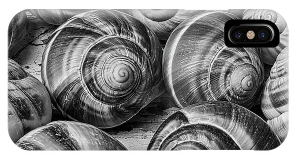 Shell Texture iPhone Case - Graphic Snail Shells In Black And White by Garry Gay