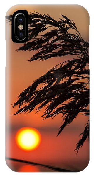 Grass Silhouette IPhone Case