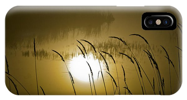Grass Silhouettes IPhone Case
