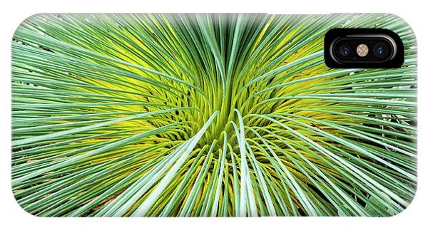 Grass Tree - Canberra - Australia IPhone Case