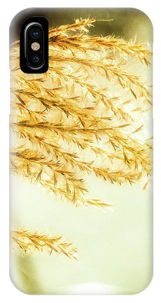 Grasses Of Gold IPhone Case