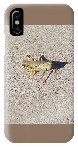 Grasshopper Curiosity IPhone Case