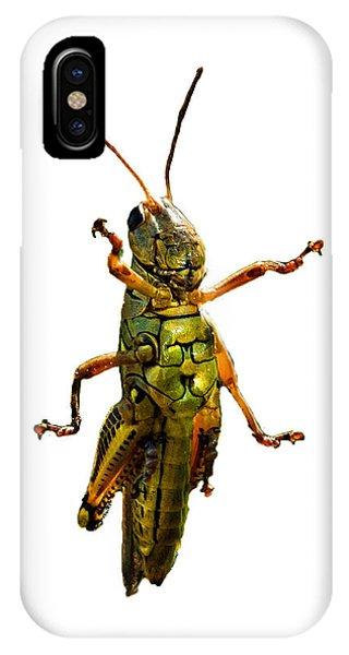 Grasshopper iPhone Case - Grasshopper II by Gary Adkins