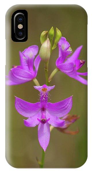 Grasspink #1 IPhone Case