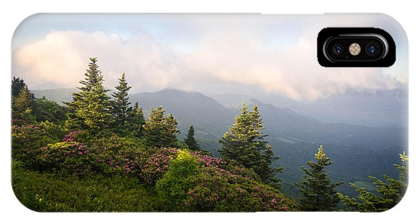 Grassy Ridge Rhododendron Bloom IPhone Case