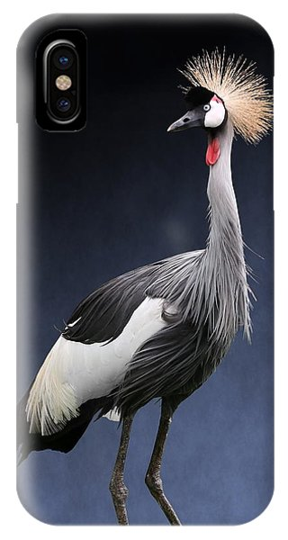 Gray Crowned Crane IPhone Case