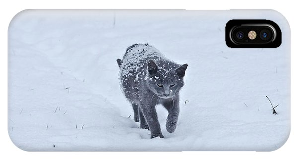 IPhone Case featuring the photograph Gray On White by Wanda Krack