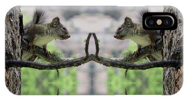 Gray Squirrel Soul Mates IPhone Case