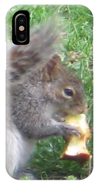 Gray Squirrel With An Apple Core IPhone Case
