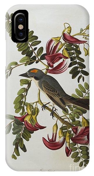 1851 iPhone X Case - Gray Tyrant by John James Audubon