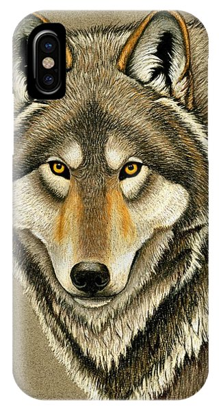 Gray Wolf Portrait IPhone Case