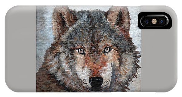 Aztec iPhone Case - Gray Wolf by Timithy L Gordon