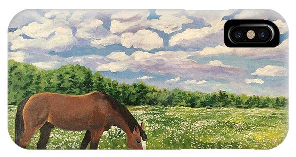 Grazing Among The Daisies IPhone Case