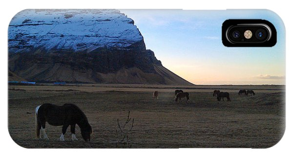 Grazing At Dawn IPhone Case