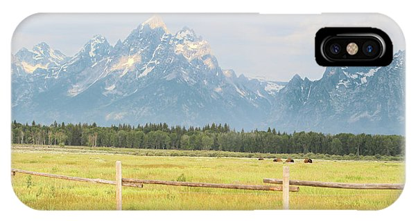 Grazing Bison IPhone Case