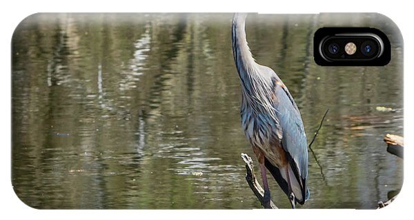 IPhone Case featuring the photograph Great Blue Heron At Johnson Park by Ricky L Jones
