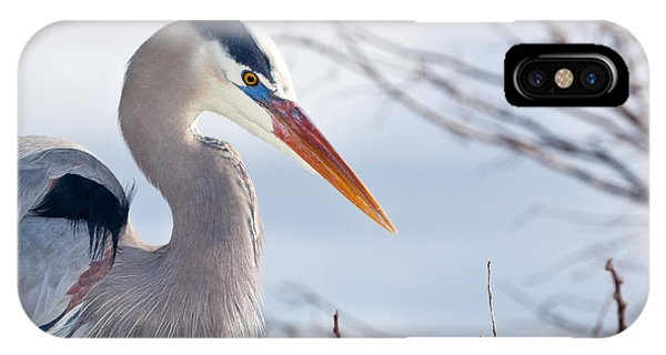 Great Blue Heron At Wakodahatchee Wetlands IPhone Case