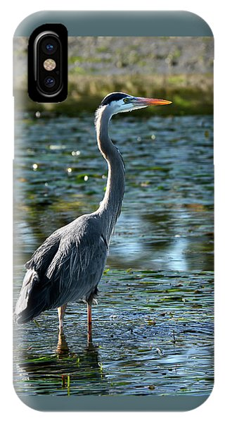 Great Blue Heron Catching The Light IPhone Case
