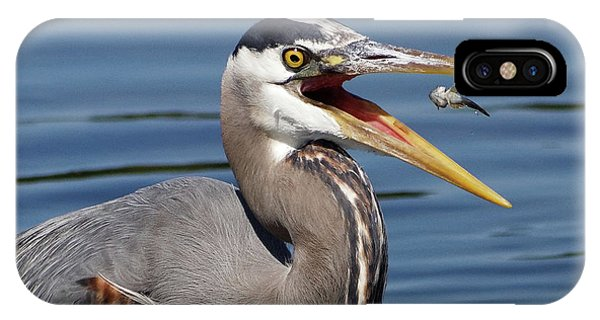 Great Blue Heron Feast IPhone Case