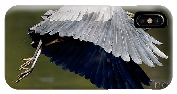 Great Blue Heron Flying With Fish IPhone Case