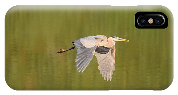 IPhone Case featuring the photograph Geat Blue Heron Burgess Res Divide Co by Margarethe Binkley
