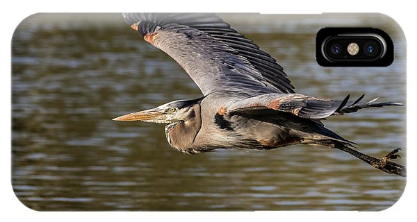 Great Blue Heron In Stratford IPhone Case