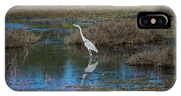 IPhone Case featuring the photograph Great Blue Heron by Jason Coward