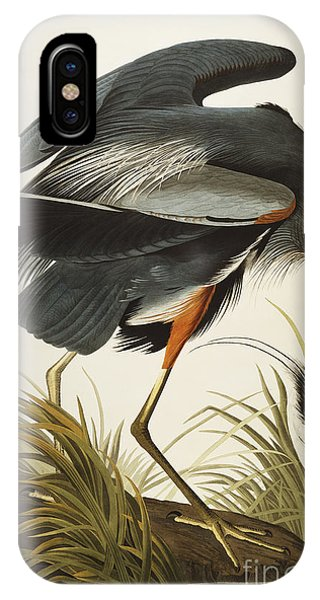 iPhone Case - Great Blue Heron by John James Audubon