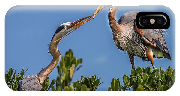 Great Blue Heron Nest Building IPhone Case