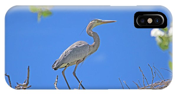 Great Blue Heron Nest Protector  IPhone Case