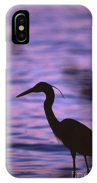 Great Blue Heron Photo IPhone Case