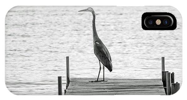Great Blue Heron On Dock - Keuka Lake - Bw IPhone Case