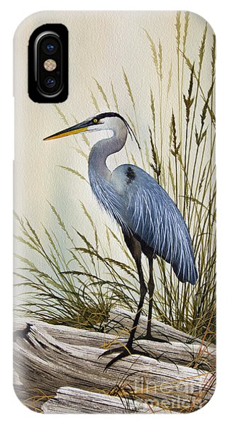Heron iPhone Case - Great Blue Heron Shore by James Williamson