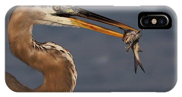 Great Blue Heron W/catfish IPhone Case